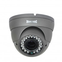 Indoor/Outdoor Dome Camera, IR LEDs +/- 100', Color, 700TVL, 12VDC, 4-9mm, IP65, NTSC, Grey Housing